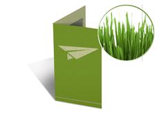 Parallelfalz Flyer Graspapier Parallelfalz Flyer Graspapier